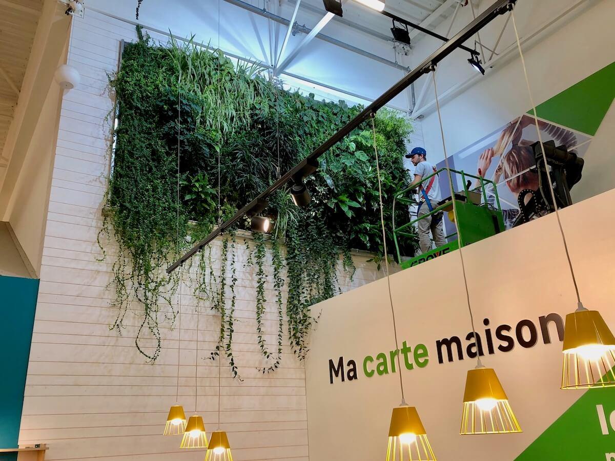 murs végétaux naturels chez Leroy Merlin