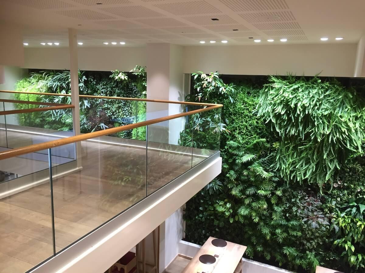 grand Mur végétal en sous sol dans un restaurant