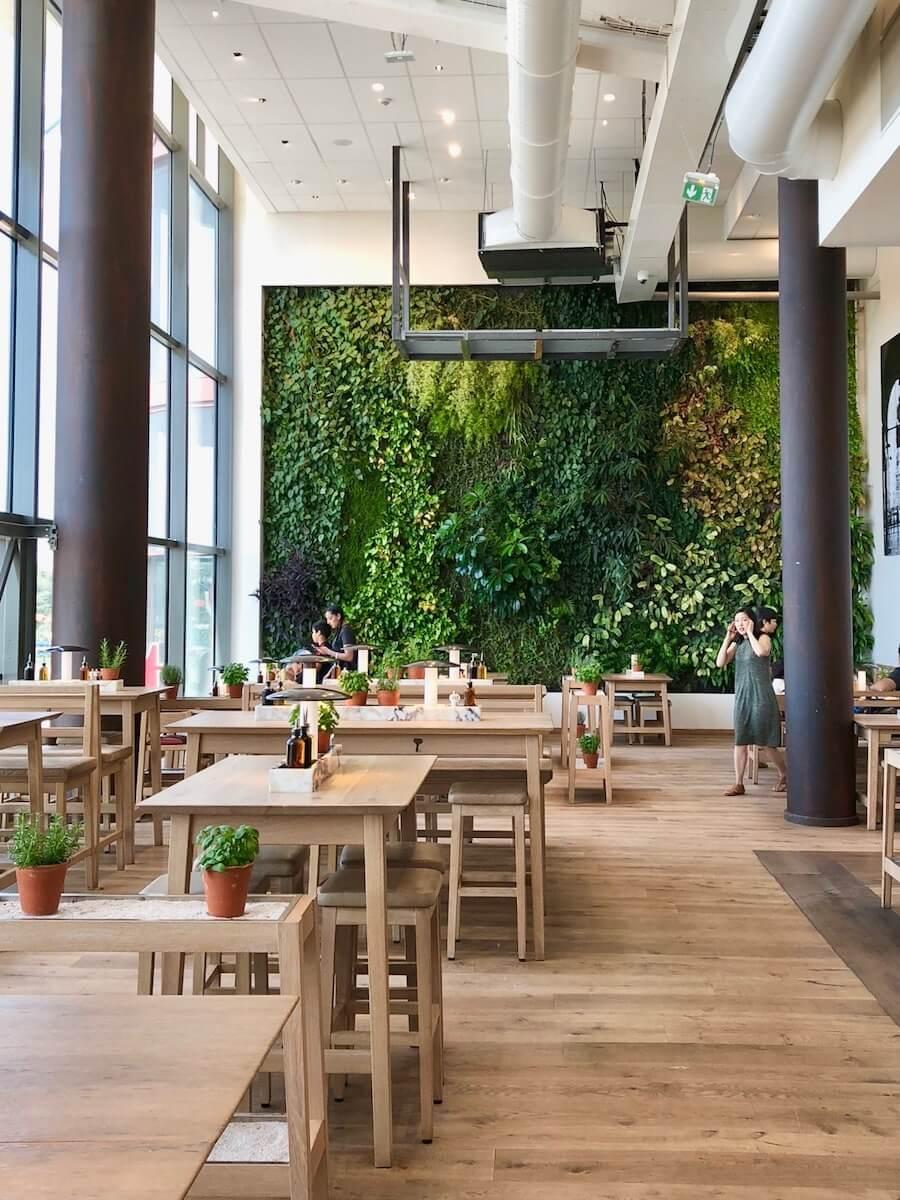 fond végétal naturel dans un restaurant