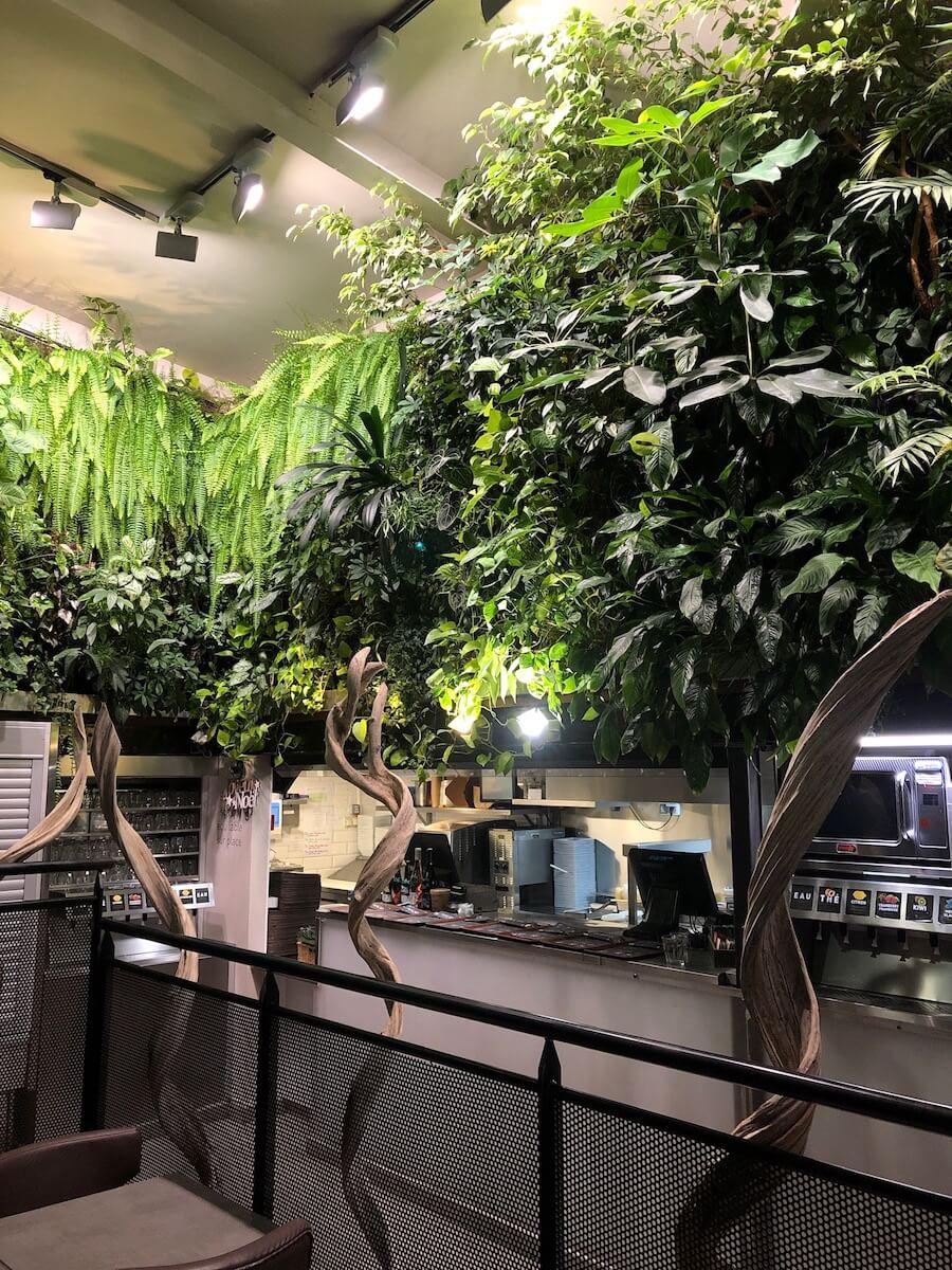 mur vegetal sous le plafond