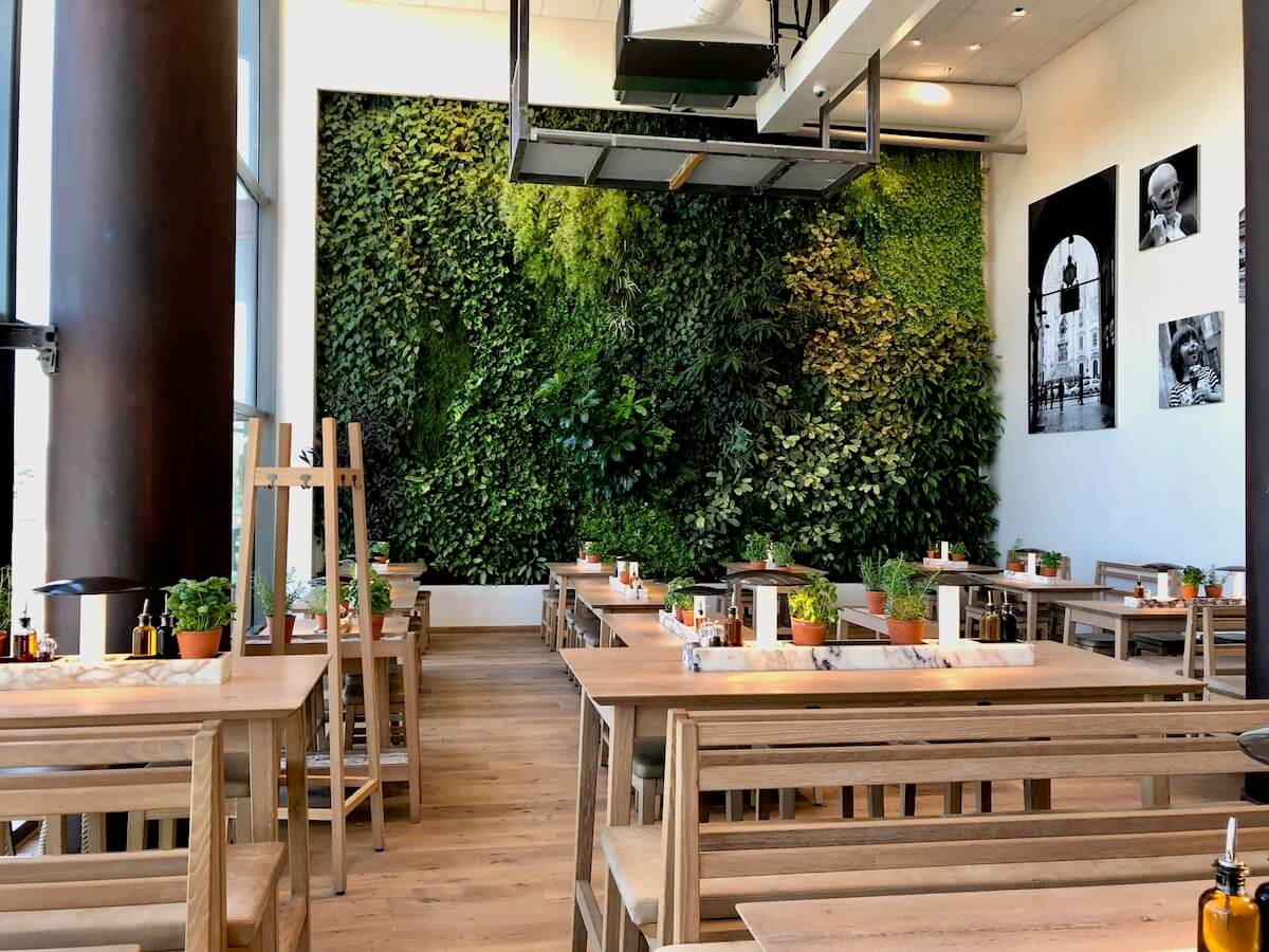 mur végétal jardin vertical chez Vapiano Disney