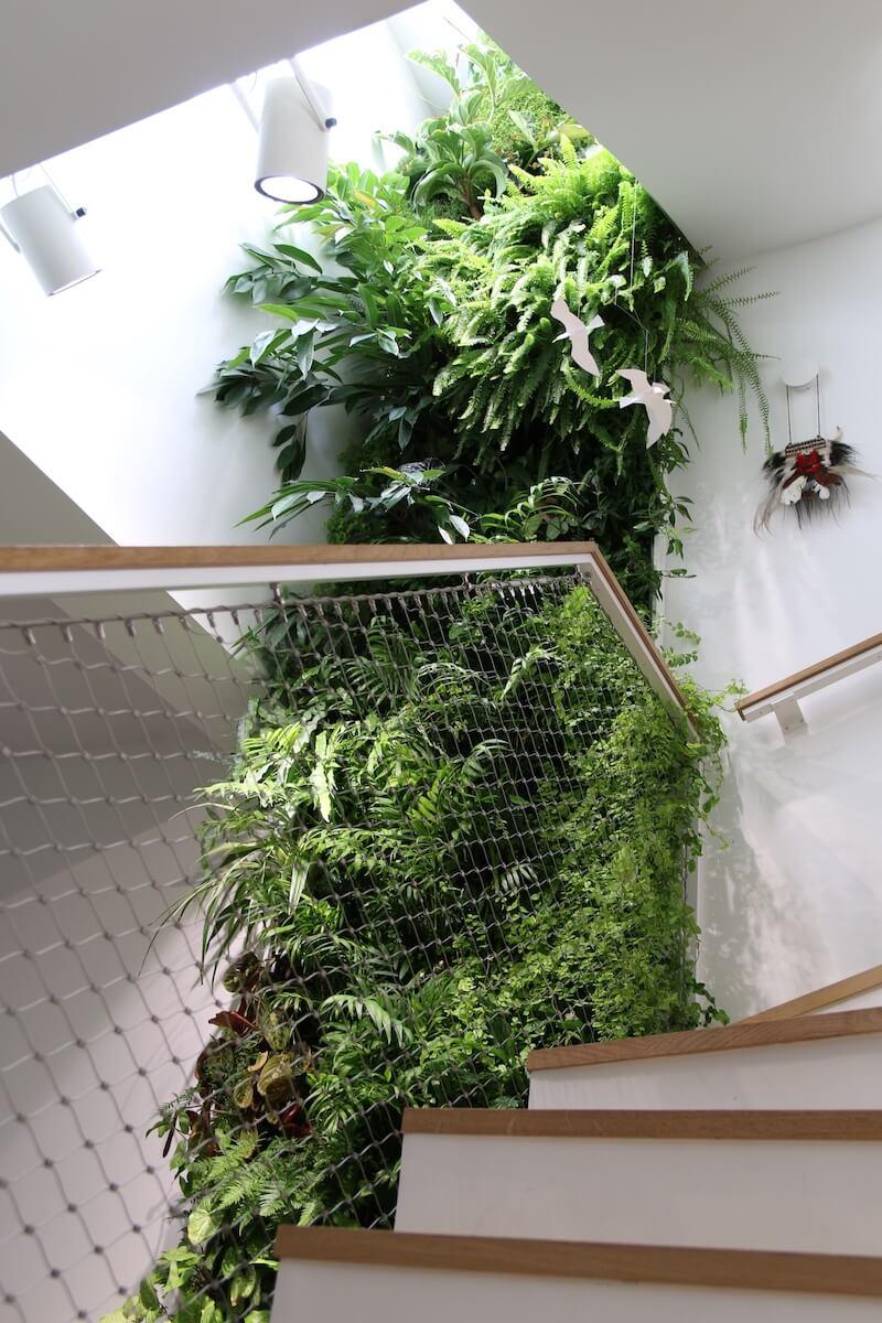 mur végétal à côté d'escalier dans une maison de particulier à Issy-les-Moulineaux