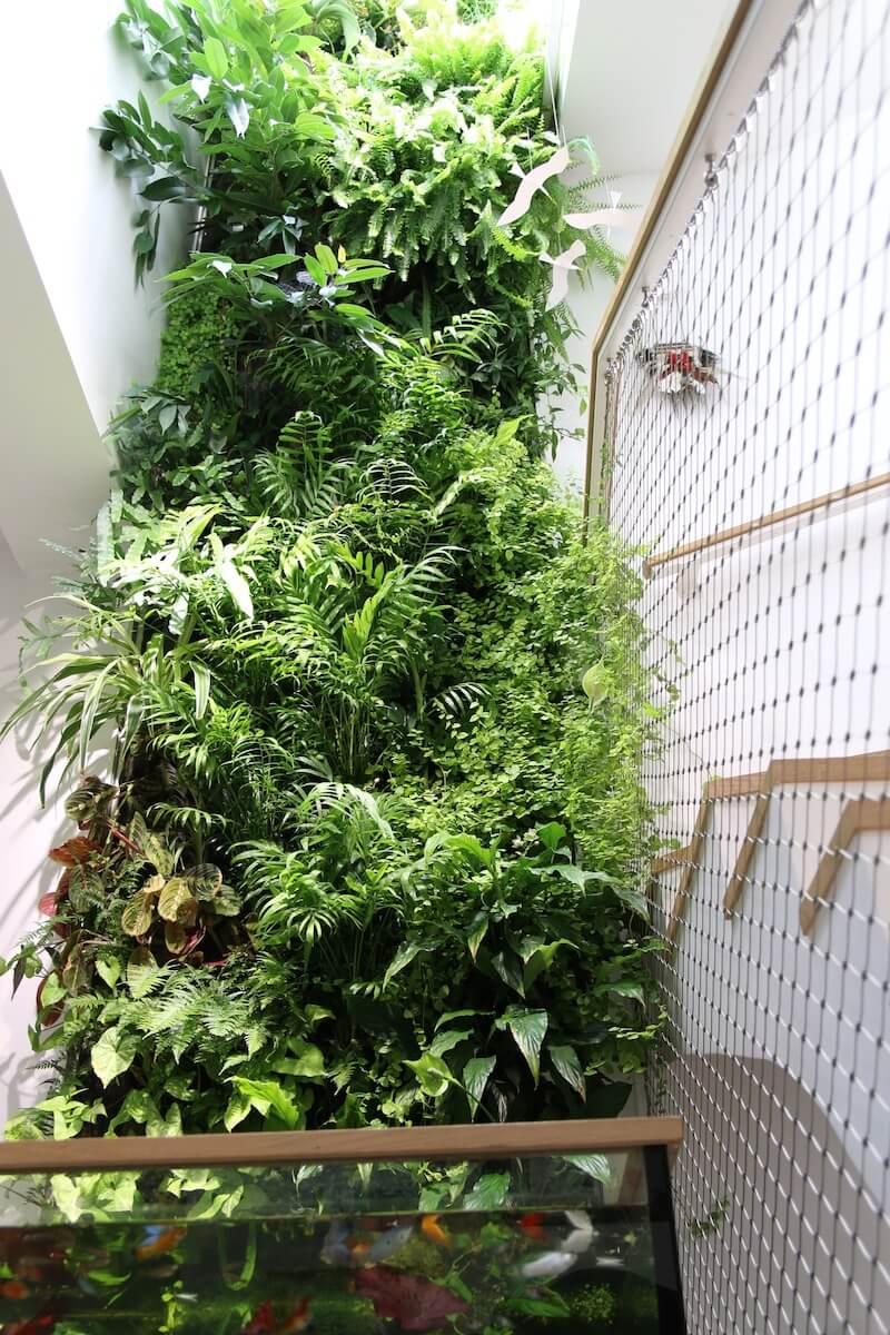 une maison de particulier avec un Mur Végétal de 7m de haut à côté d'un escalier