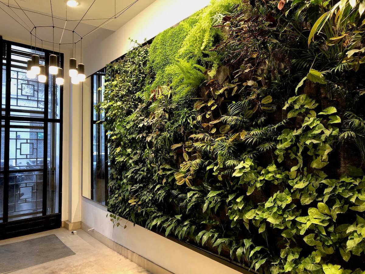 mur végétalisé dans un hall d'immeuble