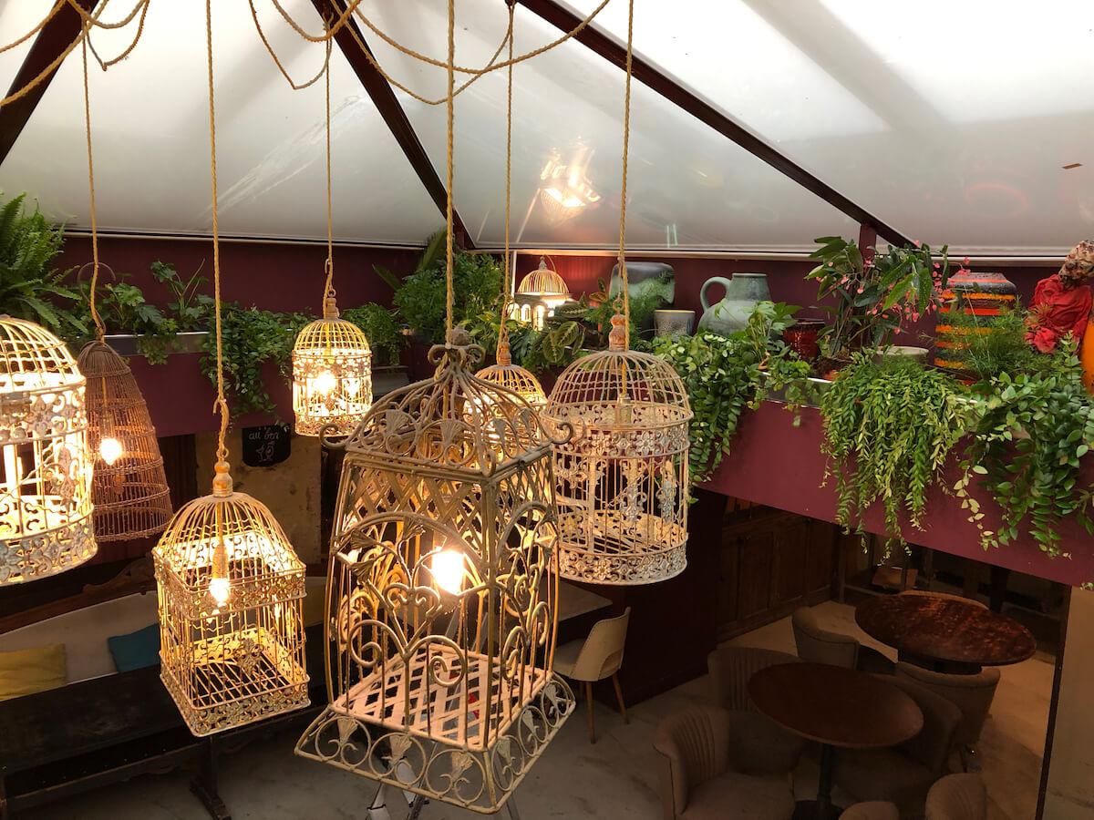 plantes vertes et lumière sur une corniche végétale