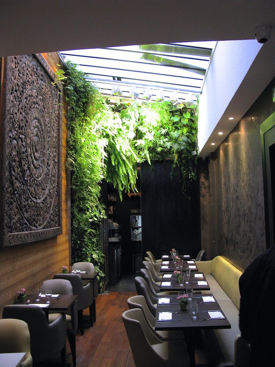mur vegetal naturel dans un restaurant thailandais