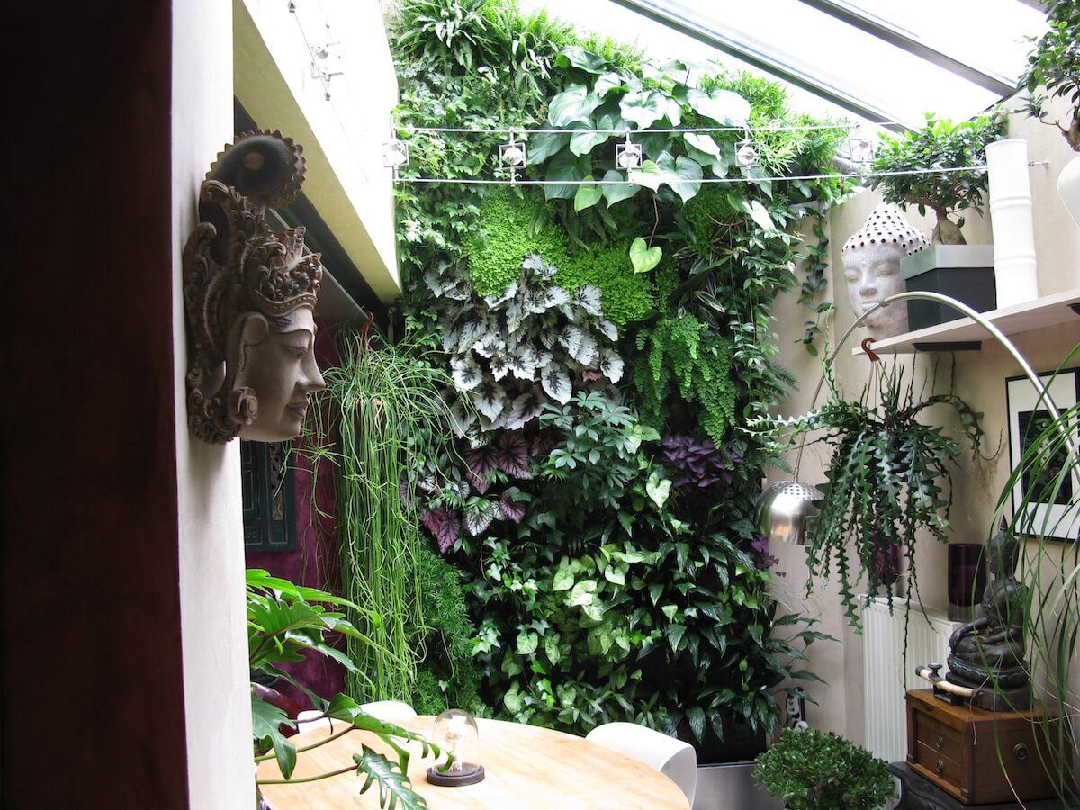 mur végétal sous une verrière dans une maison particulière à Angers