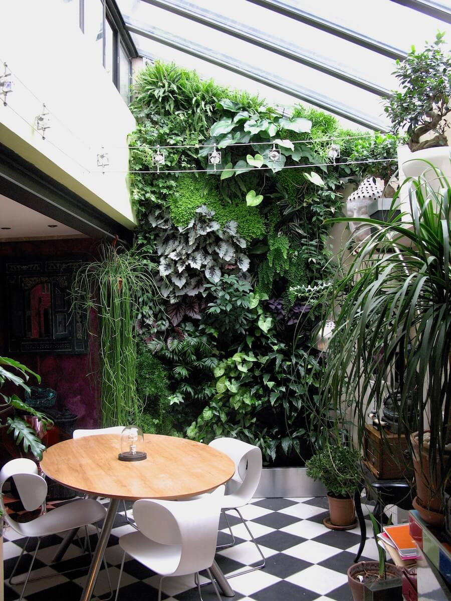 véranda végétalisé dans une maison particulière à Angers
