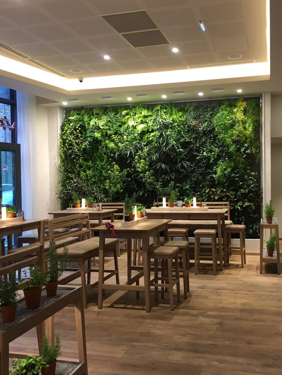 Végétation dans une salle de restaurant