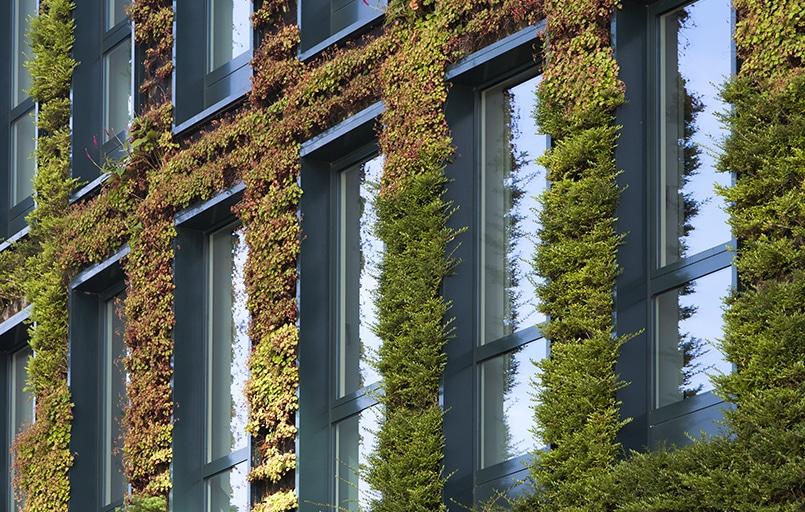 absorption de bruit par la végétation