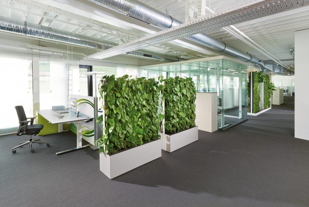 cloisons végétales au bureau