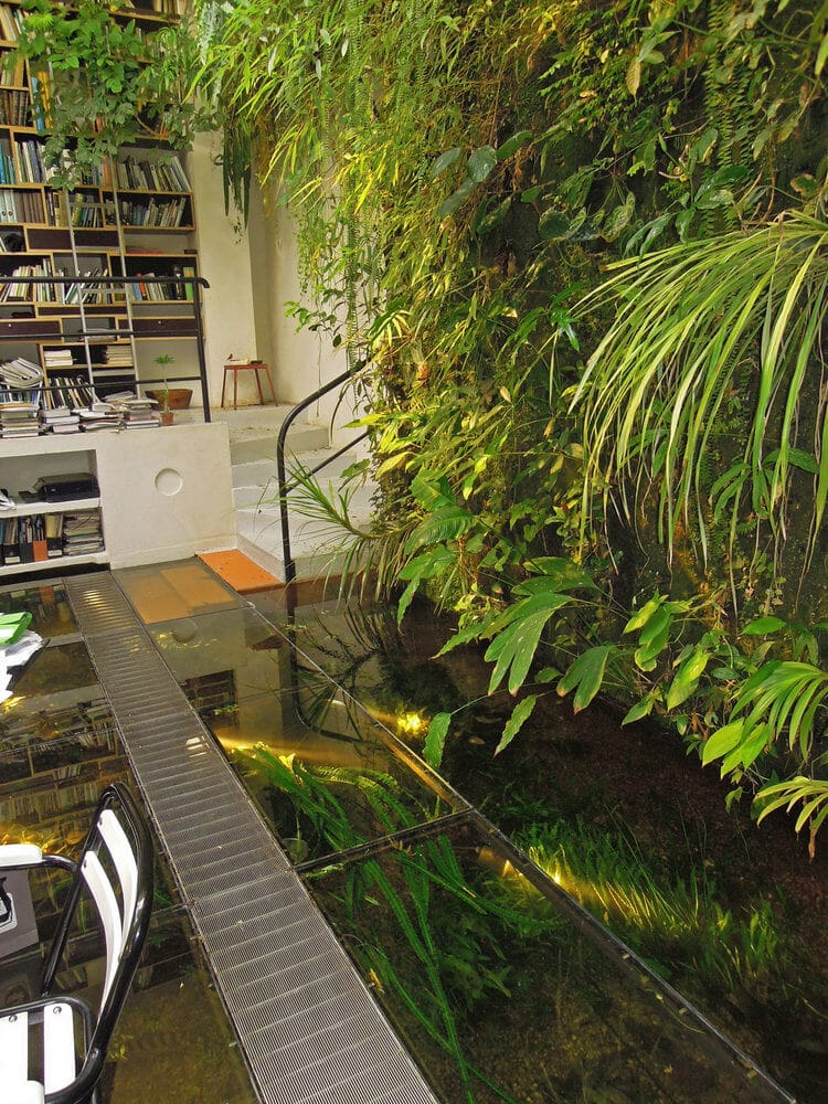 mur vegetal ecologique fonctionnant avec un aquarium