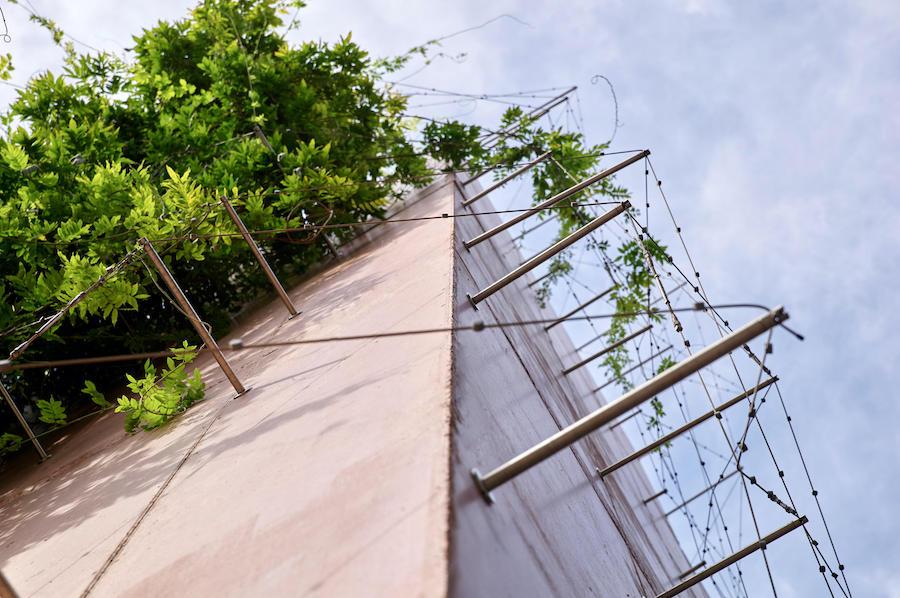 palissage de jardin sur cable