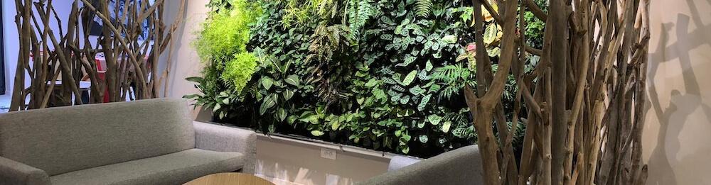 salle de repos, un mur végétalisé au travail