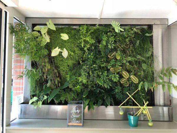 mur végétal en circuit fermé intérieur