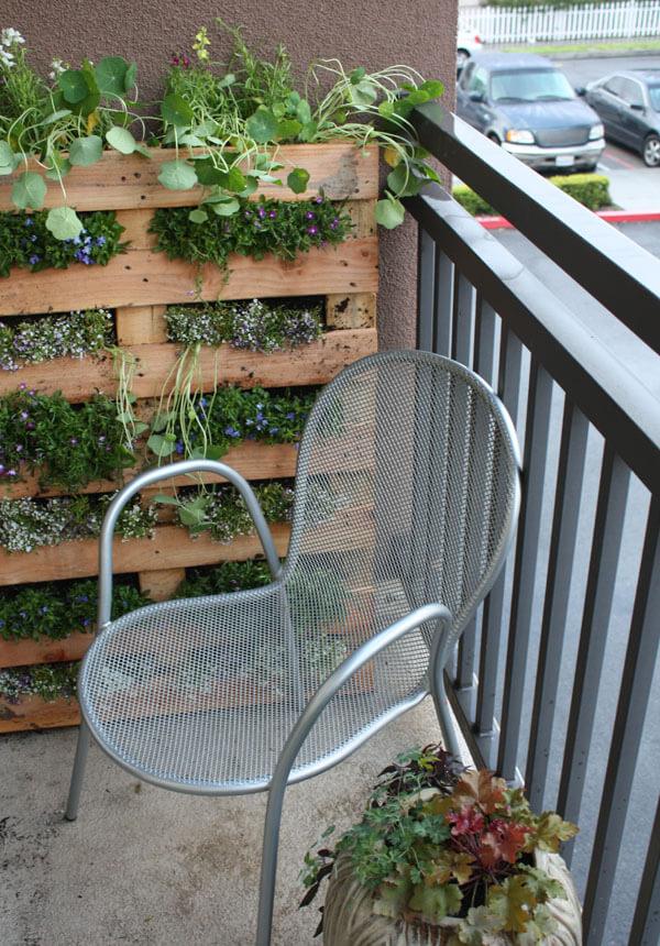 petit mur végétalisé à base d'une palette