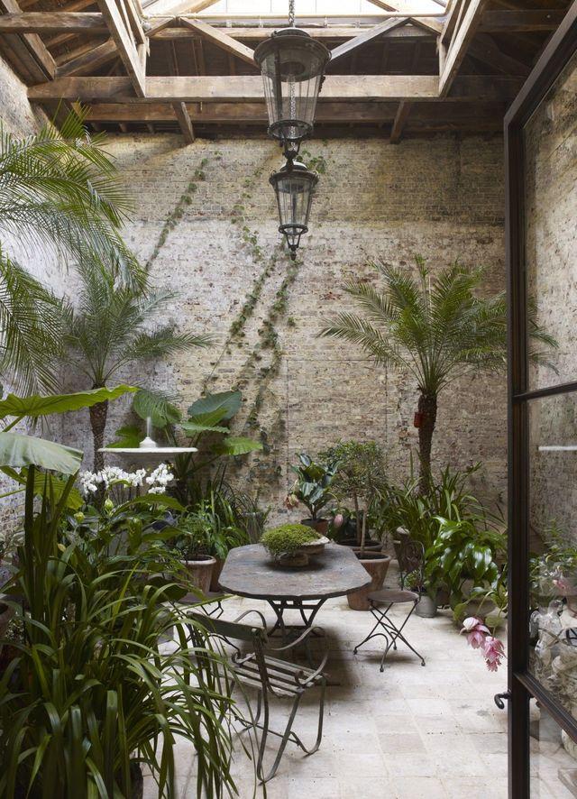 un jardin d'hiver exotique