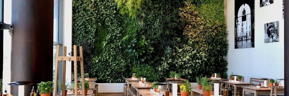 mur végétal au restaurant