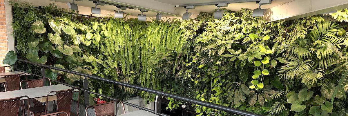 Grand mur végétal que nous avons installé en hauteur dans restaurant