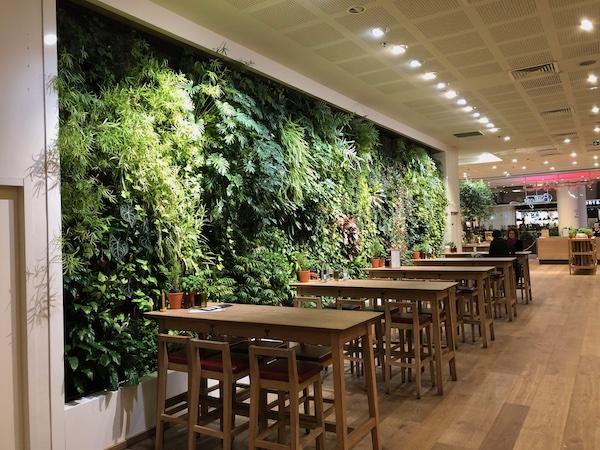 Mur végétal que nous avons installé dans un restaurant à la Défense