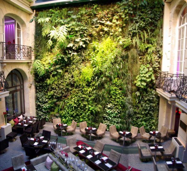 restaurant mur végétal