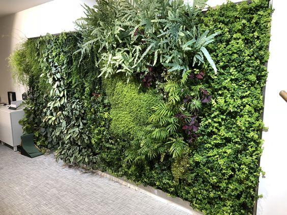 bureaux mur végétal