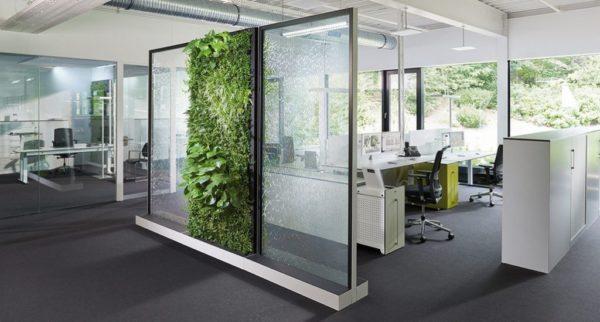 open space mur végétal