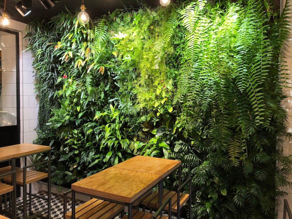 restaurant Shine Garden, rue levis, un mur végétal fait partie du concept