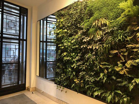 techniques pour un mur végétal