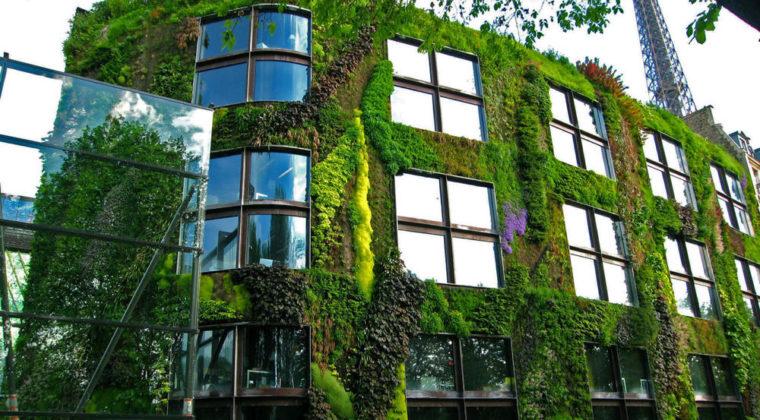 facade végétale en ville - musée du quai Branly à Paris