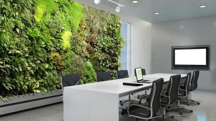 mur végétal pour améliorer la qualité de vie au bureau