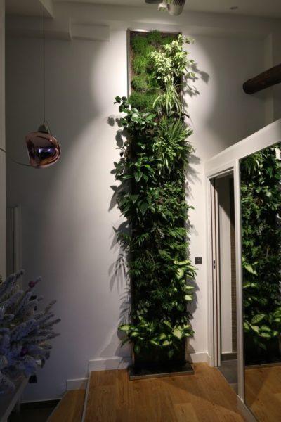 mur végétal bienfaits