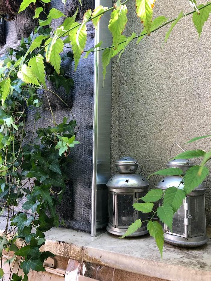 mur vegetal en extérieur sur une terrasse