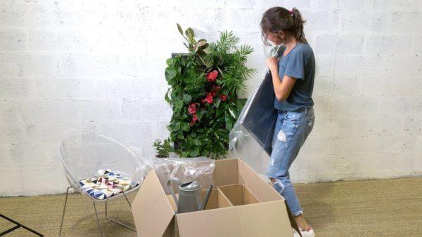 installation d'un kit pokked dans un salon