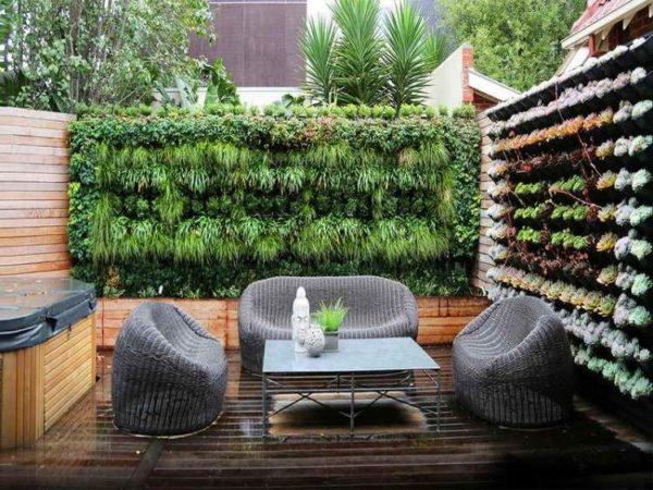 mur végétal sur une terrasse extérieure