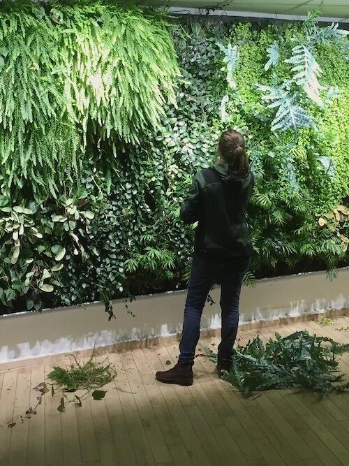 prevoir la lumière pour les plantes